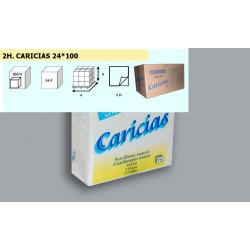 2400 SERVILLETA CARICIAS 40*40 2H. - 100 UDSx24P